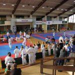 Weekend karate na Swarzędzkiej Unii